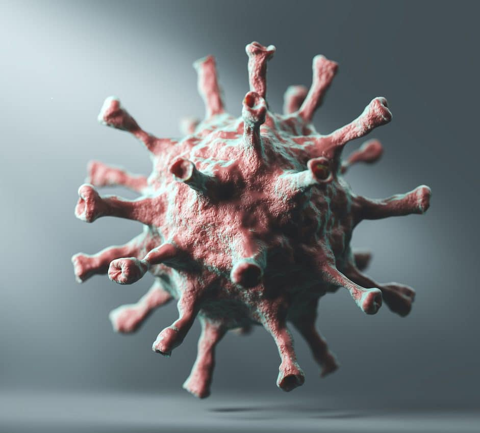 photo of the Coronavirus COVID-19.