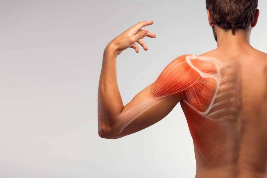 Back view of a man with frozen shoulder. Treatment available at North East Chiropractic Center